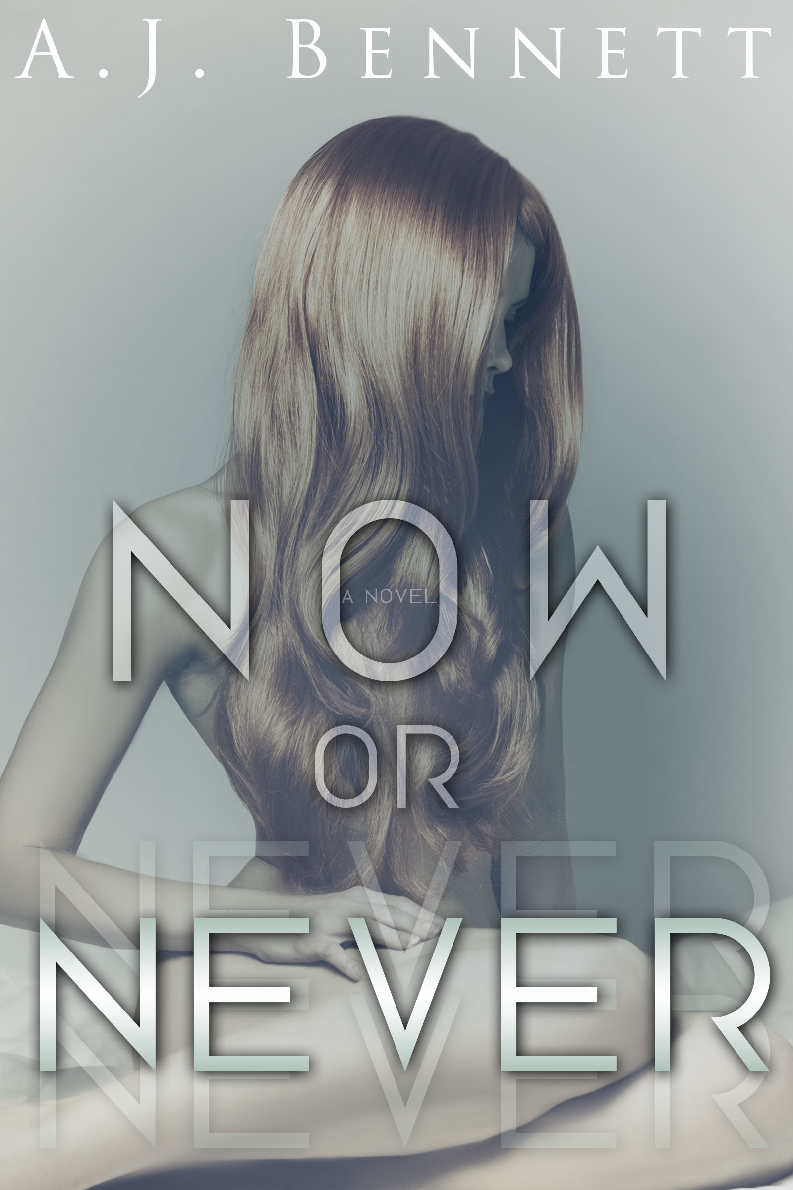 """Now or Never"" by A.J. Bennett – Review & Blog Tour"