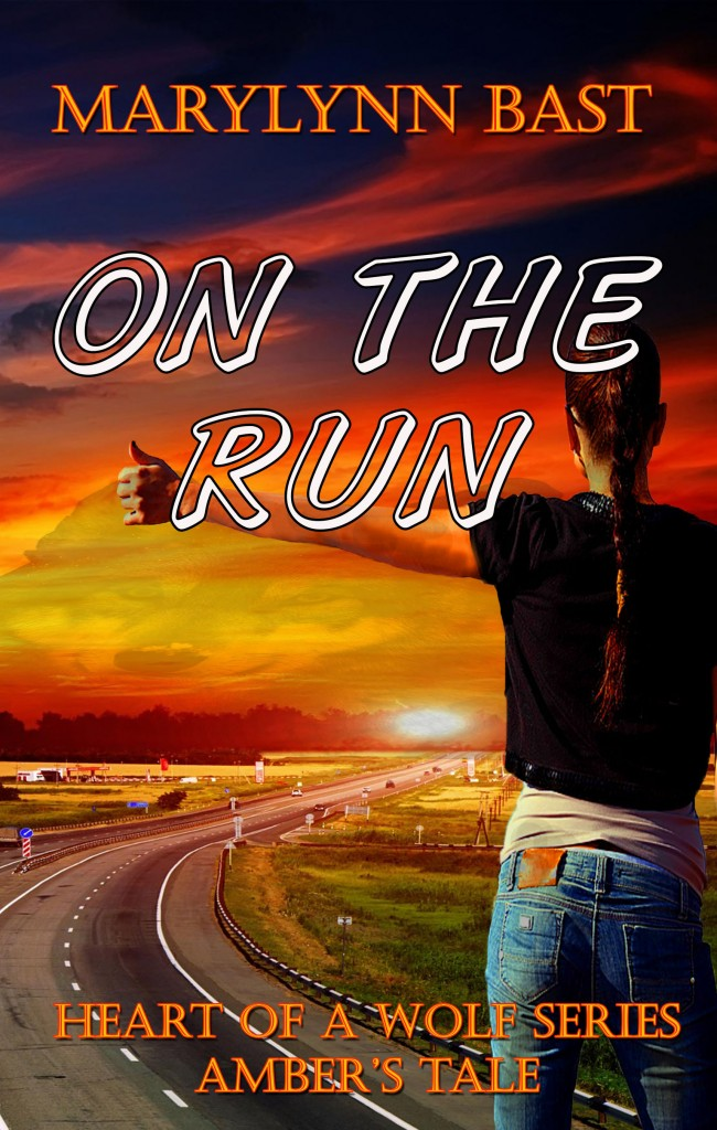 On the Run Front Cover