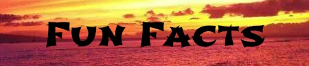 aloha_fun_facts
