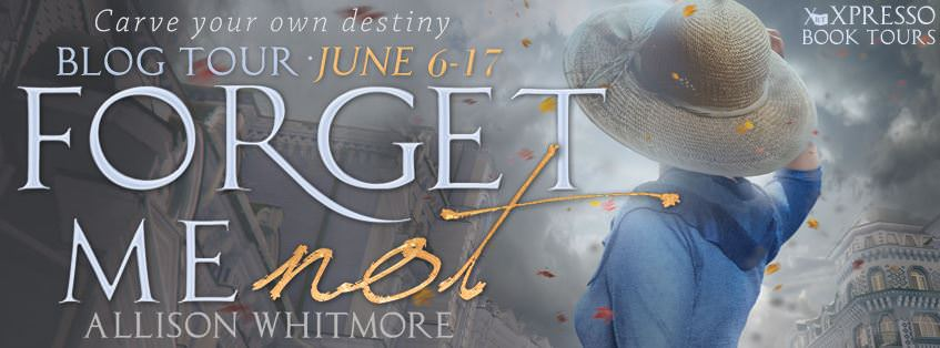 An Excerpt from Forget Me Not by Allison Whitmore