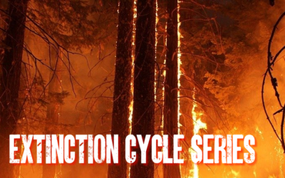 The Extinction Cycle Series